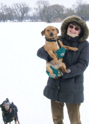Hundeschule für Senioren Nürnberg