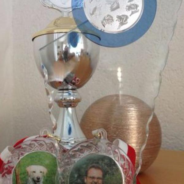 Hundeschule mit Auszeichnungen Nürnberg