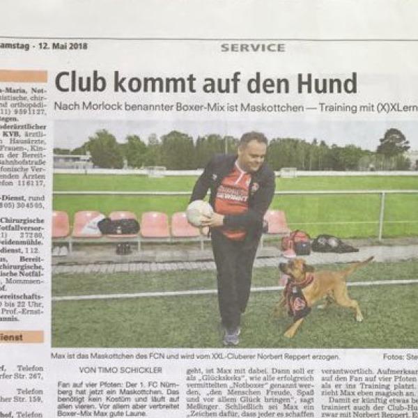 Max Maskottchen FCN trainiert bei DOGS Training Hundeschule Nürnberg