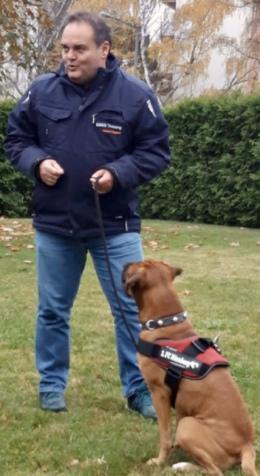 Schnelle Hilfe bei Angst vor Hunden